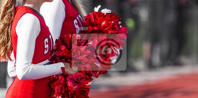Obraz Cheerleaderki z pomponami podczas gry