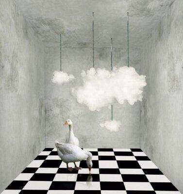 Obraz Chmury i kaczki w surrealistycznej pokoju