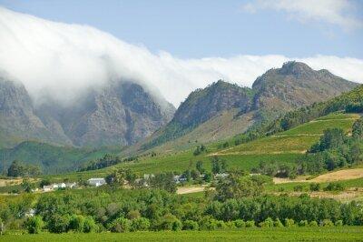 Obraz Chmury pokrycia góry w Stellenbosch wina regionu, poza Cape Town, Republika Południowej Afryki