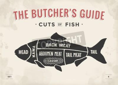 Obraz Cięcie mięsa zestaw. Plakat Butcher i schemat - ryby. Vintage rysowane ręcznie. Ilustracji wektorowych