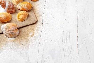Obraz Clipboard with sea shells on wooden table close up, copy space