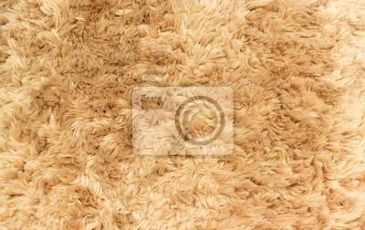 Obraz close up teddy bear wool
