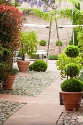 Obraz closeup of trees in pot in luxury restaurant garden