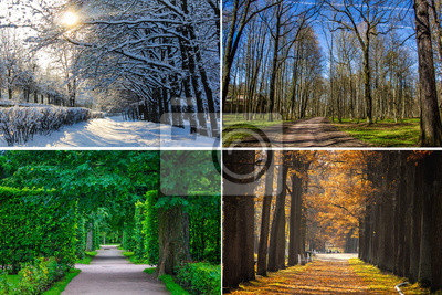 Obraz Collage seasons . All season. Seasons in one photo. Winter spring summer autumn. Tree branch. Grass with dew. Nature.