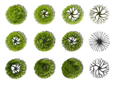 Obraz Collection of abstract watercolor green tree top view isolated on white background for landscape plan and architecture layout drawing, elements for environment and garden.