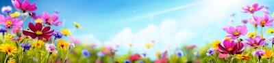 Obraz Cosmos flower in the field