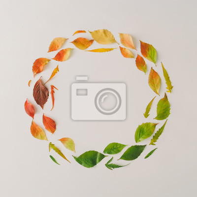 Obraz Creative wreath of colorful autumn or fall leaves. Flat lay, top view. Changing season concept. Nature composition with paper card note copy space.