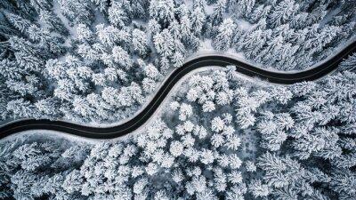 Obraz Curvy wietrzna droga w śniegu zakrywał las, wierzchołka puszka widok z lotu ptaka