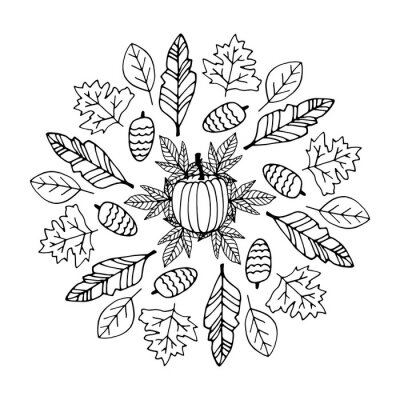 Cute doodle autumn mandala with leaves, cones and pumpkins on white background. Hand drawn vector illustration for coloring page and artbooks for adults and kids.