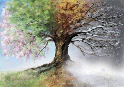 Obraz Cyfrowe ilustracji z czterech sezonów drzewa