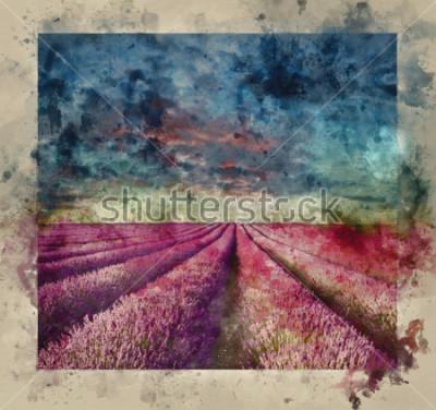 Obraz Cyfrowego akwareli obraz Oszałamiająco lato zmierzch nad lawendowym śródpolnym krajobrazem