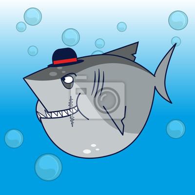Obraz czapka rekin