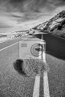 Czarny i biały obrazek tumbleweed na drodze, Capitol Reef park narodowy, Utah, usa.