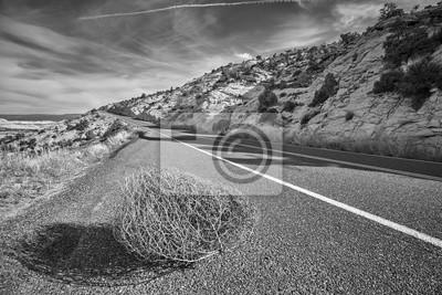 Czarny i biały obrazek tumbleweed na drodze, Utah, usa.