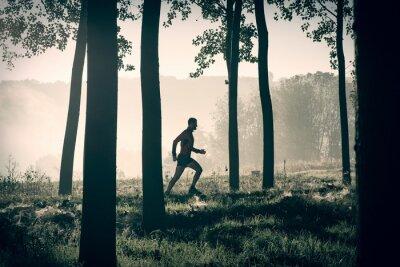 Obraz Człowiek działa na ścieżce w lesie