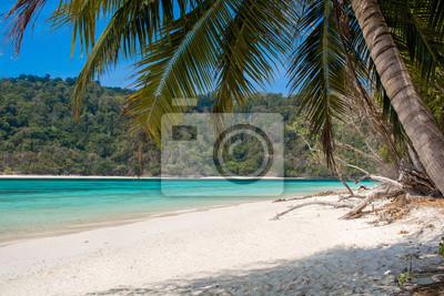 Czyste morze, plaża i palmy kokosowe pozostawia w sezonie letnim