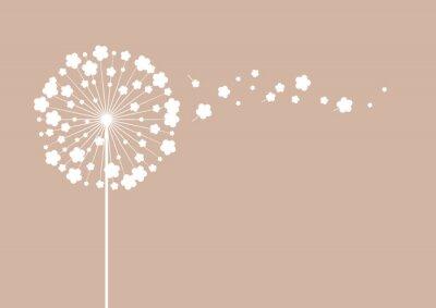 Obraz Dandelion kwiat na brązowym tle