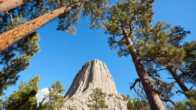 Devils Tower, a laccolith butte composed of igneous rock in the Bear Lodge Mountains, top attraction in Wyoming State, USA.