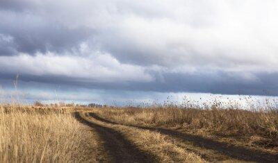 Obraz Dirt drogowego w tej dziedzinie suchej w pochmurny dzień