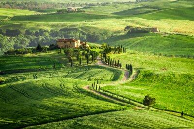 Obraz Dom w Toskanii znajduje się na wzgórzu