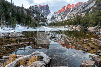 Dream Lake Shallows Driftwood