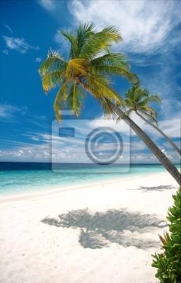 dream plaży