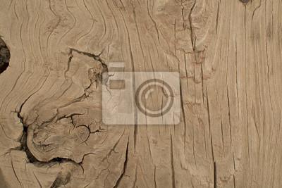 Obraz Drewno tekstury tła
