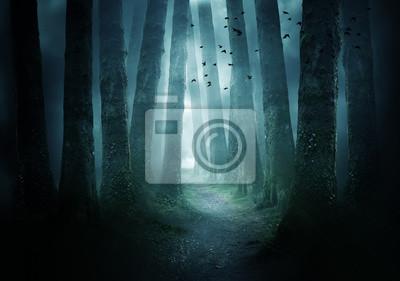 Obraz Droga przez ciemny las