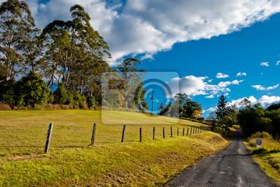Droga w spokojnym krajobrazie wiejskim