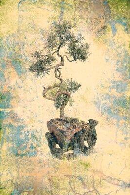 Obraz drzewa bonsai na grungy papier stary