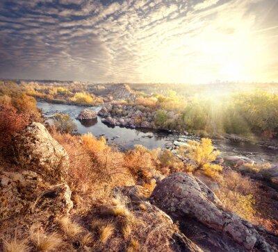 Obraz Drzewa na brzegu rzeki górskiej