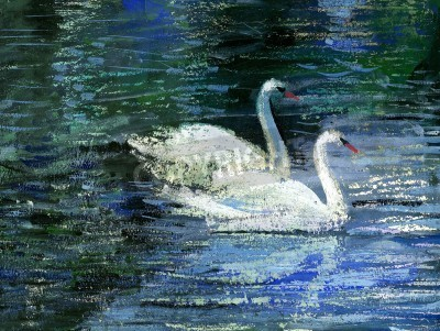 Obraz Dwa białe łabędzie na jeziorze