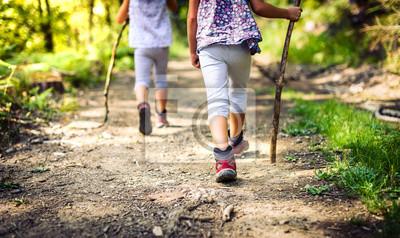 Obraz Dzieci wędrówki w górach lub lasach z butami do uprawiania turystyki.