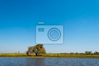 Dzika przyroda w pobliżu Parku Narodowego Kakadu, Australia