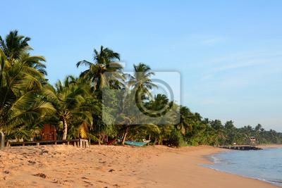 Dzikie piękne plaże Sri Lanki. Łodzie na wybrzeżu.