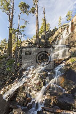 Eagle Falls i drzewa cedrowe