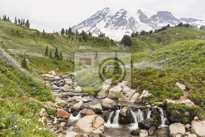 Edith Creek i Mt. Ranier
