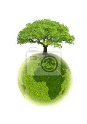 ekologia planeta Ziemia