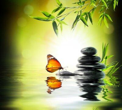 Obraz Ekskluzywny delikatny koncepcja - motyl na wodzie w ogrodzie