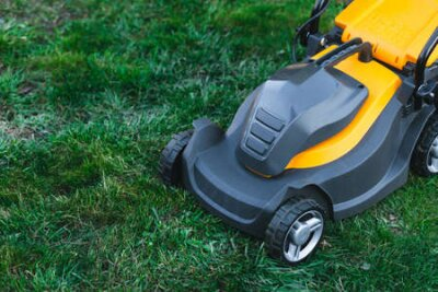 Obraz Electric lawn mower on a lawn at the garden. gardening concept