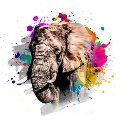Obraz Elephant head with creative colorful abstract elements on white background