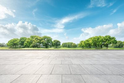 Obraz Empty square floor and green forest natural landscape