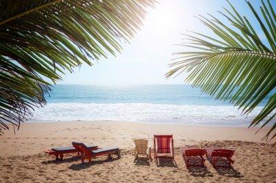 Empty sunbeds on a tropical beach, summer holiday concept.