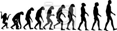 Ewolucja człowieka vector