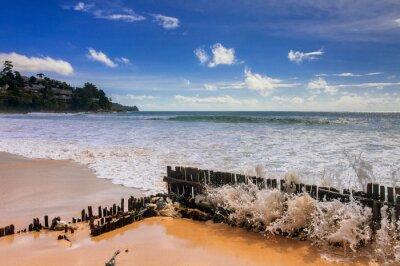 Exotic tropical beach.