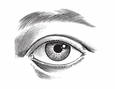Obraz eye of the person