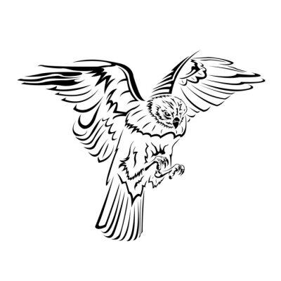 Falcon Lotu Tatuaż Czarno Biały Obrazy Redro