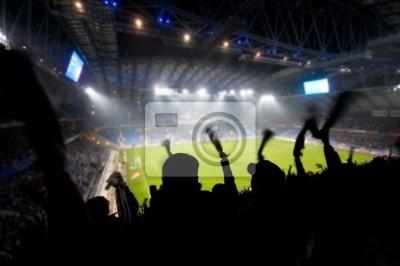 Fani świętuje gola na piłkarski / soccer meczu