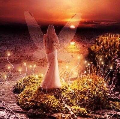 Obraz Fantasy magiczny świat. Pixie i zachód słońca