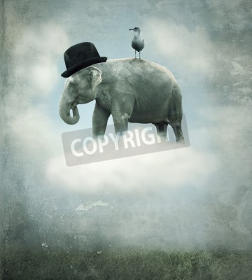 Obraz Fantasy surrealistic background with an elephant with a hat and a gull that flying on a cloud in the sky